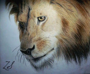 The Lion (Lew) by ZsArtworks