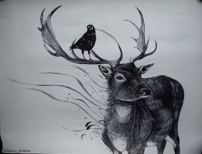 stag and crow by cherry